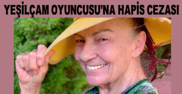 Yeşilçam Oyuncusu Nilüfer Aydan'a 'Cumhurbaşkanına Hakaret'ten Hapis Cezası