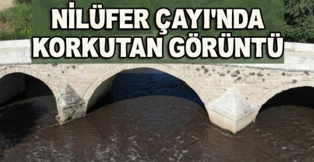 Marmara Denizine Akan Nilüfer Çayında Korkutan Görüntü